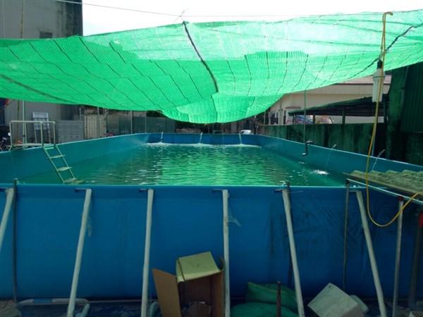 Bể bơi di động tại Đồng Nai